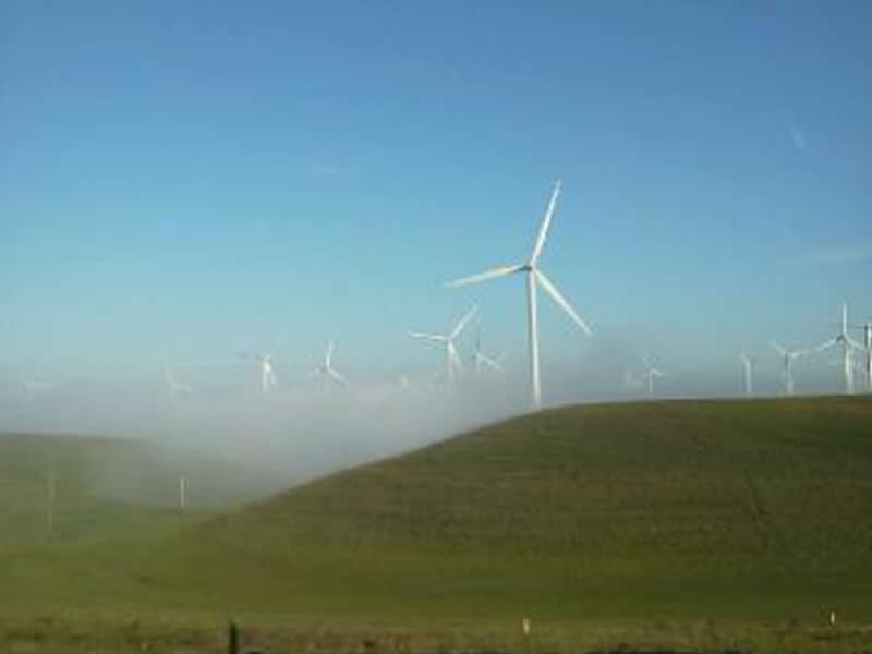 Shiloh Wind Turbine Farm
